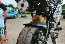 Bike art ds-designer