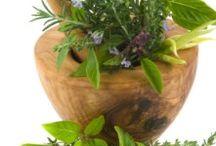 The Herbs - Cannabis