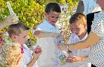 Ceremonies -- Family Sand Ceremony / by A Forever After Wedding Rev. Patricia Borsum