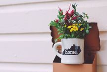 Home State Mugs / With the thickness of an old-fashioned diner cup, we bring you our line of Home State mugs.  Whether you are refilling at the coffee shop or brewing tea in your very own kitchen, these gems will bring comfort and warmth in more ways than one.