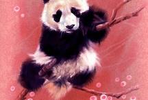 Pandaaaa love