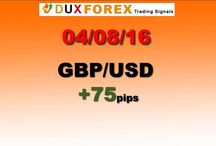 Daily Forex Profits Performance 04/08/16