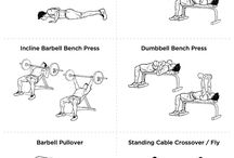 Dumbbell and Barbell Workouts