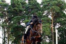 Клуб Кавалькада в конном спорте