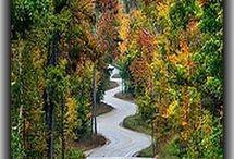 Road in wisconsin