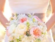 Blush Weddings