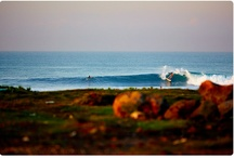 Waves-Surf(Indonesia) / All About surf in Indonesia