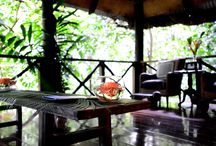 Jungle Spa / Fiji's Leading Spa - the Jungle Spa at Qamea Resort & Spa