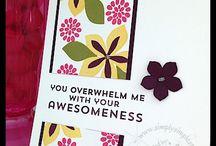SU - Connie Stewart flashcards