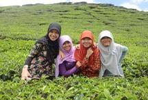 Solok, West Sumatra, 2011