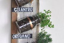decoraciones de plantas