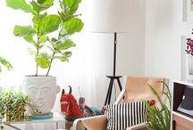 living room / by Kira Zeebs