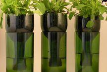 Újrahasznosítás- borosüveg