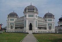 sumatra / Un itinerario tra natura e genti Sumatrane.  Gli Oranghi e la giungla del parco nazionale Gunung Leuser. L'etnia Batak e il lago Toba. Il mercato di Bukittingi, le fantastiche case dei Minangkabau. Il più grande fiore del mondo. La cucina e il mare a Padang.