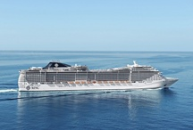Our Ships / MSC Cruises operates a fleet of 12 magnificent ships. The Fleet: MSC Preziosa, MSC Divina, MSC Splendida, MSC Fantasia, MSC Magnifica, MSC Poesia, MSC Orchestra, MSC Musica, MSC Sinfonia, MSC Armonia, MSC Opera and MSC Lirica.  Cruising year round in the Mediterranean and the Caribbean and seasonally in Northern Europe, the Atlantic Ocean, the French Antilles, South America, South and West Africa, The United Arab Emirates, Black Sea and the Red Sea.