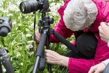 Photographin pals / Macro nature photography
