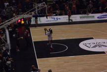 Olimpia Milano / pallacanestro meneghina