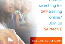 Get SAP Online Training For Better Future / In order to make your future more successful and more bright you can take the SAP online training through our institute.