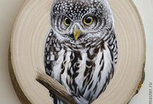 Super cute Оwl