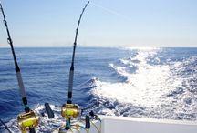 Pesca en Barcelona / La pesca en Barcelona reúne a muchos pesqueros profesionales y aficionados durante todas las estaciones del año. Pues la costa es amplia y son muchos lo espacios donde encontrar buenos ejemplares. http://www.barcelonacharter.net/pesca-en-barcelona