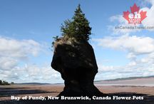 New Brunswick Canada / Everything and Anything New Brunswick Canada Travel and Adventure
