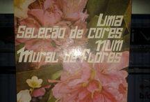 Uma Seleção de Cores Num Mural de Flores / Uma Seleção de Cores Num Mural de Flores - O. V. De Morais. www.sebodolanati.com