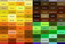 catalog culori