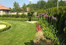 Прекрасные композиции в садах