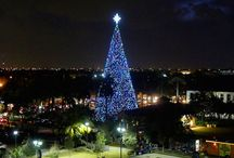 Christmas in the Palm Beaches
