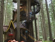 Troys tree hut ideas