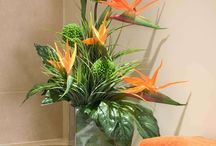 Flower Arranjements
