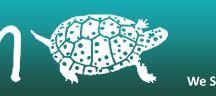 Reptile & Amphibian Care  / by Calvin College Ecosystem Preserve