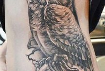 owls ....love