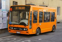 European Buses - City Duty buses (1) / European City Buses.