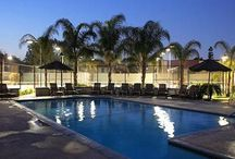 Riverside apartments for rent / The best apartments to rent in Riverside, CA!