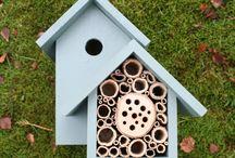 Case pentru păsări