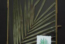 Botanical - Herbarium