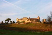 Vins blancs secs de Bordeaux
