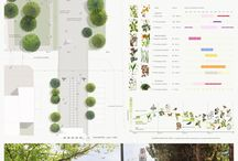layouts / layouts for architectural and urban competitions