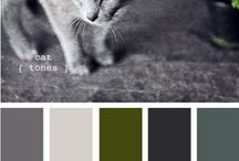 Color palettes / by Jessica Markham