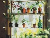 Creative shelfs