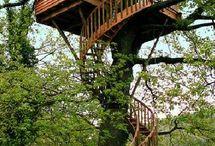 tree houses / by Mandi Willis