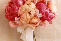 stuff: flowers