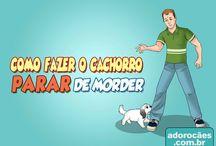 Chicó