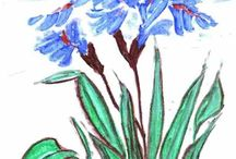 Φυτά λουλούδια