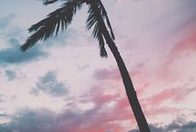 Tumblr♡