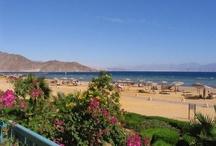 Taba - Egyiptom utazás / Taba a varázslatos természeti környezet és a nyugodt pihenés szerelmeseinek városa. Utazzunk ide az év bármely szakaszában, garantáltan feltöltekezve érkezünk haza. Last minute utazás ajánlatok Taba városába: http://www.divehardtours.com/Taba/