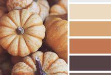 Palette couleur pour décoration