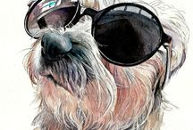 Toy dog portraits / A selection of lifelike, high end pet portraits from the Tilly & Blue range