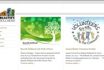 Websites / A sample of some of the websites we've created.
